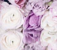 Rose und Tulpen die Reflexion auf der Oberfläche Lizenzfreie Stockfotografie