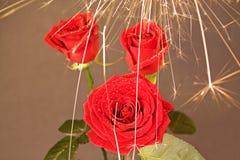 Rose unter dem Funkenregen 3 Lizenzfreie Stockfotos