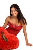 rose valentin Royaltyfria Bilder