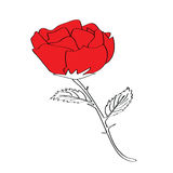 Rose for valentine's day. Hand drawn rose for valentine's day Royalty Free Stock Photos