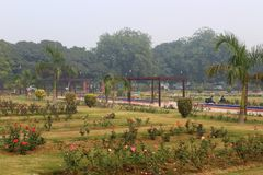 Rose variopinte in Rose Garden nazionale, Nuova Delhi, India Fotografie Stock Libere da Diritti