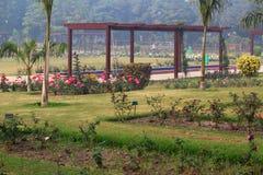 Rose variopinte in Rose Garden nazionale, Nuova Delhi, India Fotografia Stock Libera da Diritti