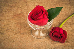 Rose in a vase on a artsy background with copyspace Stock Photos