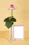 Rose in vase and frame Stock Photos