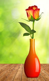 Rose in a vase Stock Images