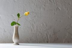 Rose in vaso su vecchio fondo bianco Immagine Stock Libera da Diritti