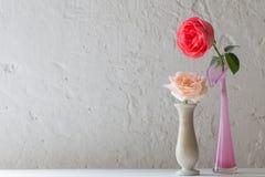 Rose in vaso su vecchio fondo bianco Fotografie Stock