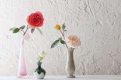 Rose in vaso su vecchio fondo bianco Immagini Stock