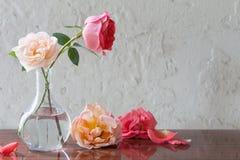 Rose in vaso su vecchio fondo bianco Immagine Stock
