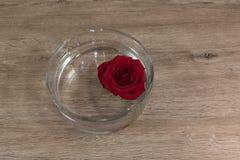 rose vatten Royaltyfri Bild