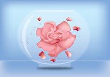 rose vatten Fotografering för Bildbyråer