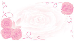 Rose vec ornament background Royalty Free Stock Photography
