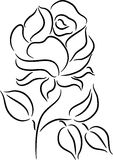 Rose Vector Royalty Free Stock Photo