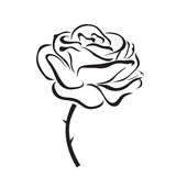 Rose vector icon Royalty Free Stock Images