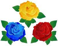 Rose Vector Illustration Set Stock Photos