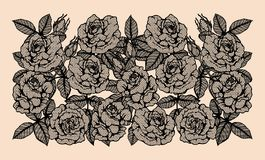 Rose vector lace by hand drawing.Rose lace art highly detailed in line art style. Rose vector lace by hand drawing.Beautiful flower on brown background.Rose lace Royalty Free Stock Photography