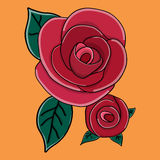 Rose vector Royalty Free Stock Images