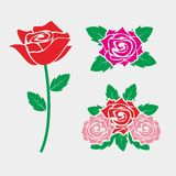 Rose Vector. Simple and beautiful rose flower vector Stock Images