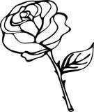 rose vektor Arkivfoton