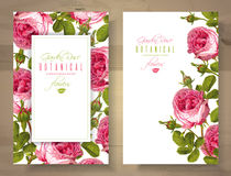 Rose vertical banners Royalty Free Stock Photography