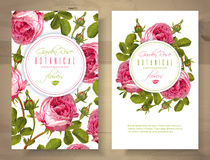 Rose vertical banners Royalty Free Stock Images
