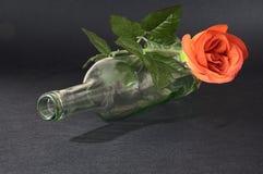 Rose vide de rouge de witk de bouteille de vin de blanc Photographie stock libre de droits
