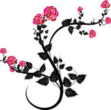 Rose vines-9. Vector vines with red roses royalty free illustration
