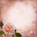 Rose on a vintage background Royalty Free Stock Image