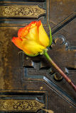 Rose on Vintage Book Stock Photos