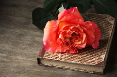 Rose and vintage book Stock Photography