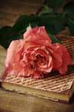 Rose and vintage book Royalty Free Stock Image