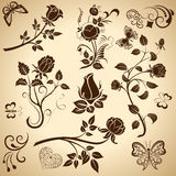 Rose vintage design elements Royalty Free Stock Photo