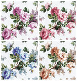 rose vintage on fabric background, set 4 color pink red blue and orange  colour Stock Image