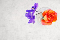 Rose and violet flowers in crystal glass Royalty Free Stock Images