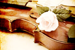 Rose on a Violin Royalty Free Stock Photo