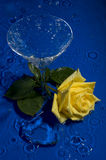 Rose in water. Yellow rose, crystal heart and glass in water on dark blue background royalty free stock photography