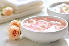 Rose water Royalty Free Stock Photo