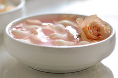Rose water. Infused water with rose petals in a white bowl Stock Image