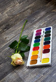 Rose and watercolor paints. Tea rose and watercolor paints on wooden background. Vertical diagonal imagination Royalty Free Stock Photo