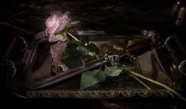 Rose and weapons. Stiletto with a rose on a tray. royalty free stock photography