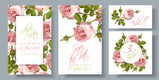 Rose wedding invitation. Vector wedding invitations set with garden rose flowers on white background. Can be used as floral design for natural cosmetics, perfume Royalty Free Stock Image