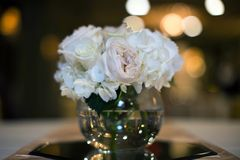 Rose Wedding Reception Centerpiece rosa Fotografia Stock Libera da Diritti