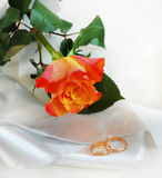 Rose and wedding rings. Orange rose and wedding rings Stock Photo