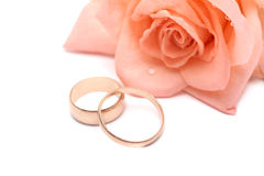 Rose and wedding rings. On a white background Royalty Free Stock Images