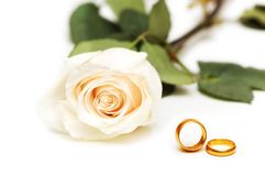 Rose and wedding rings. Isolated on the white Royalty Free Stock Photo