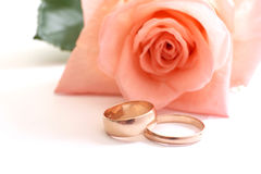 Rose and wedding rings. On a white background Stock Image