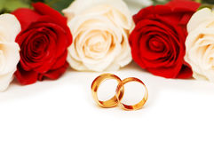 Rose and wedding rings isolated Royalty Free Stock Image