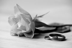 Rose and wedding rings. Lie on a table Royalty Free Stock Photography