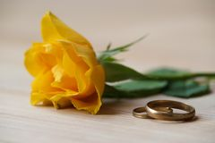 Rose and wedding rings. Lie on a table Stock Image