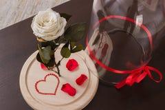 rose wektor ilustracji tło białe Fotografia Stock